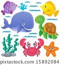动物群 收藏 海洋 15892084
