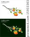 Fruits & Vegetables (026) 15933363