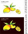 Fruits & Vegetables (037) 15933403