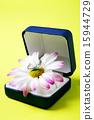 Gift_216 15944729