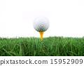 Golf_079 15952909
