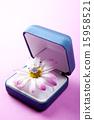 Gift_169 15958521