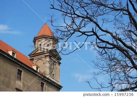 Bratislava Castle  15997236