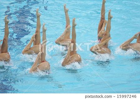 同步游泳表演 15997246