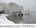 lake, shore, the 15999251