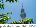 skytree tower, towers, tower 16003059