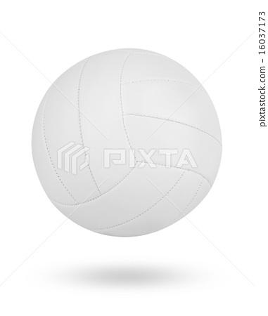 Volleyball ball 16037173