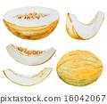 甜瓜 哈密瓜 水果 16042067