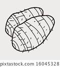 Taro doodle 16045328