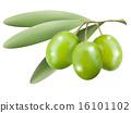 olives 16101102