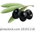 olives 16101118