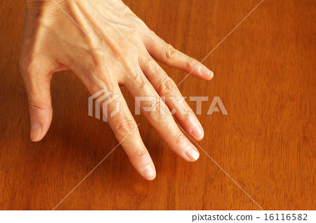 The left hand of a woman in his 40's to 50's 16116582