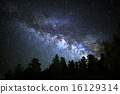Milky Way Galaxy rising over Alpine Forest 16129314