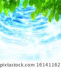 生態學 波紋 生態 16141162