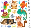 Pets theme collection 1 16162572