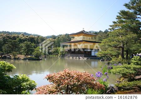 Kinkakuji in May 16162876
