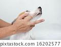 brushing tooth hand 16202577