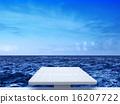 springboard 16207722