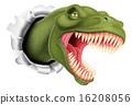 tyrannosaurus, tyrannosaur, dinosaurs 16208056