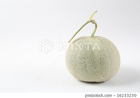 Melon _ melon 16233250