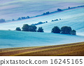 Rolling landscape of  South Moravia in the morning 16245165