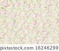 패턴, 장미, 꽃잎 16246299