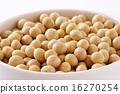 黃豆 豆子 豆 16270254