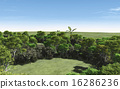 beautiful green forest for ecology concept 16286236