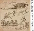 Hawaii - Travel. An hand drawn vectors. 16288279