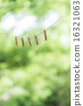 laundry, clothes peg, clothes-peg 16321063
