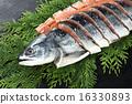 연어, 생선 토막, 토막 생선 16330893