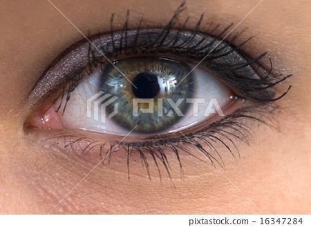 eye 16347284