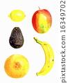 水果 食品 原料 16349702