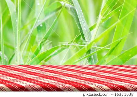 green grass background with picnic table stock photo 16351639