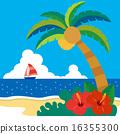 棕榈树 矢量 海洋 16355300