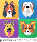 Set dog head icon flat design  16357148