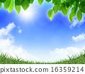 陽光 鮮綠 日光 16359214
