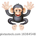 chimp, cute, cartoon 16364548