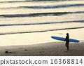 冲浪 海浪 海岸 16368814