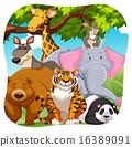 코끼리, 벡터, 그림 16389091