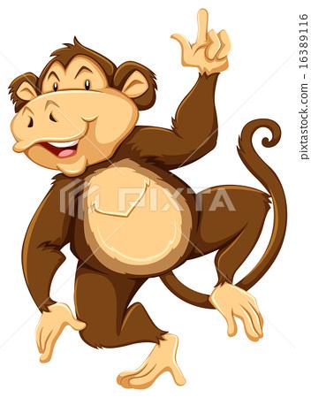 Monkey 16389116