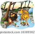 Animals 16389362