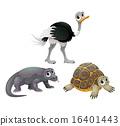 Funny Australian animals 16401443