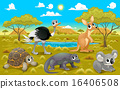 Australian animals in a natural landscape 16406508