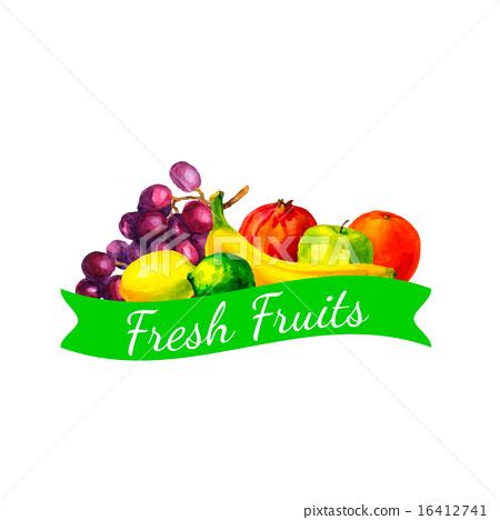 Hand drawn watercolor fresh organic fruits  16412741