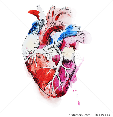 Creative Drawings Of The Human Heart Diagram - DIY Enthusiasts ...