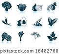 蔬菜 图标 一组 16482768