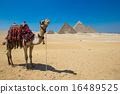Giza in Cairo, Egypt. 16489525