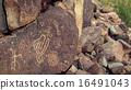 Petroglyphs 16491043