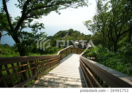 Nishi Izu Board walk to Love Cape 16491752